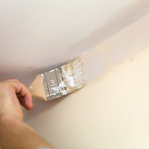Brush weld the walls with the ceiling white paint.