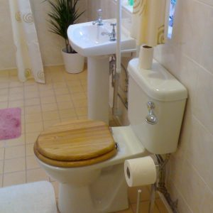 Bathroom modern, with disabled access